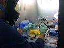 Imagem de uma pessoa realizando testes em uma capela de exaustão gases.