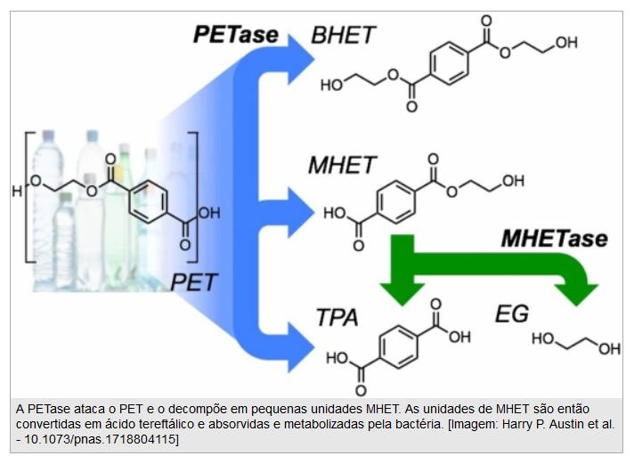 Imagem da estrutura química do PET