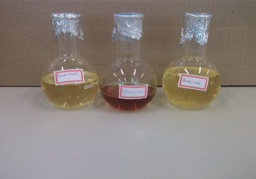 Imagem do desenvolvimento do experimento.