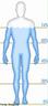 Água no corpo humano