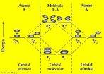 Imagem representando o diagrama de energia do orbital molecular pi.  A teoria dos orbitais moleculares (MO) constitui uma alternativa para se ter uma vis�o da liga��o, todos os el�trons de val�ncia t�m uma influ�ncia na estabilidade da mol�cula. (El�trons dos n�veis inferiores tamb�m podem contribuir para a liga��o, mas para muitas mol�culas simples o efeito � pequeno), a teoria MO considera que os orbitais at�micos, AOs, do n�vel de val�ncia, deixam de existir quando a mol�cula se forma, sendo substitu�dos por um novo conjunto de n�veis energ�ticos que correspondem a novas distribui��es da nuvem eletr�nica (densidade de probabilidade). Esses novos n�veis energ�ticos constituem uma propriedade da mol�cula como um todo e s�o chamados, consequentemente de orbitais moleculares. <br/><br/> Palavras-chave: Orbital molecular pi. Diagrama de energia. Liga��o qu�mica.