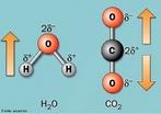 Representa��o das mol�culas de �gua e g�s carb�nico com os respectivos dipolos. <br/><br/> Palavras-chave: Liga��es qu�micas. Dipolo. �gua. G�s carb�nico.