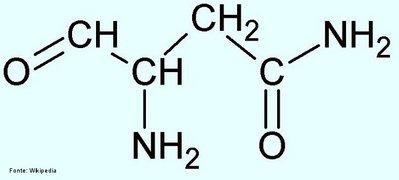 Asparagina Disciplina Química