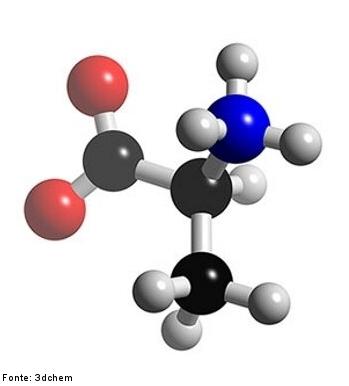 Alanina Disciplina Química