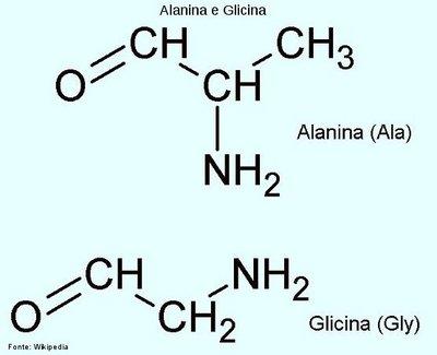 Alanina Ala Disciplina Química
