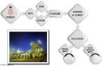 Esquema representando a produção do poliestireno partindo do petróleo ao produtos finais do poliestireno cristal (GPPS) e  alto impacto (HIPS). <br/><br/> Palavras-chave: Petróleo. Química do carbono. Poliestireno. Polímeros.