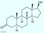 Dihidrotestosterona (DHT) (Nome completo: 5&#945;-Dihidrotestosterona, abreviado para 5&#945;-DHT; INN: androstanolona) é um metabólito biologicamente ativo do hormônio testosterona, formado principalmente na próstata, testículos, folículos capilares e glândulas adrenais pela enzima 5&#945;-redutase através da redução da ligação dupla 4,5. A dihidrotestosterona pertence à classe dos componentes chamados andrógenos, também geralmente chamados de hormônios androgênicos. A DHT é cerca de 30 vezes mais potente que a testosterona devido à sua afinidade aumentada pelo receptor de andrógenos. Fórmula molecular C19H30O2. Massa molar 290,440 g/mol. <br/><br/> Palavras-chave: Dihidrotestosterona. Medicamentos. Química orgânica. Doping.