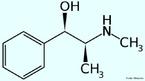 A efedrina é uma amina simpatomática similar aos derivados sintéticos da anfetamina, muito utilizada em medicamentos para emagrecer, pois ela faz que o metabolismo acelere, queimando mais gordura (através da termogênese - produção de calor), porém causa uma forte dependência, o que fez a droga ser proibida para este uso, mas ainda pode ser encontrada em algumas farmácias em forma de remédios destinados para problemas respiratórios. Fórmula molecular C10H15NO. Massa molar 165,23 g/mol. Nomenclatura IUPAC (sistemática) (1R,2S)-2-(methylamino)-1-phenylpropan-1-ol <br/><br/> Palavras-chave: Efedrina. Medicamentos. Química orgânica. Doping.