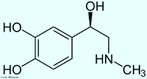 Representação da molécula de Adrenalina ou epinefrina é um hormônio, derivado da modificação de um aminoácido aromático (tirosina), secretado pelas glândulas supra-renais, assim chamadas por estarem acima dos rins. Em momentos de &quot;stress&quot;, as supra-renais secretam quantidades abundantes deste hormônio que prepara o organismo para grandes esforços físicos, estimula o coração, eleva a tensão arterial, relaxa certos músculos e contrai outros. Fórmula molecular C9H13NO3. Massa molar 183.204 g/mol. Nomenclatura IUPAC (sistemática) (R)-4-[1-hidroxi-2-(metilamino)etil]benzeno-1,2-diol <br/><br/> Palavras-chave: Adrenalina. Hormônios. Química orgânica. Doping.
