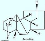 A aconitina (acetilbenzoilaconina) é um dos alcaloides mais venenosos que se conhece. É o alcaloide mais abundante do Aconitum napellus L. (99% dos alcaloides totais) e as suas propriedades farmacológicas e medicinais são conhecidas desde 1833. É um diéster formado por ácido acético e ácido benzoico e pela base aconina (alcamina nor-diterpênica penta-hidroxilada). É muito tóxica e a dose letal para o adulto situa-se entre 3 a 6 mg. A aconitina atua como um veneno muito rápido, causando um abrandamento do ritmo cardíaco e um abaixamento da pressão sanguínea. A absorção através da pele pode ser fatal e as floristas que manipulam o A.napellus L. podem sofrer envenenamento. Fórmula Molecular: (C34H47NO11). Massa Molar=645,75. <br/><br/> Palavras-chave: Aconitina. Alcaloides. Química orgânica. Toxicologia.