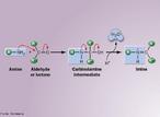 Representação da uma reação de adição nucleofílica para síntese de uma amina a partir de uma imina. <br/><br/> Palavras-chave: Reações orgânicas. Funções orgânicas. Aminas. Iminas. Mecanismo de reações.