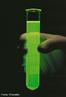 Imagem de um tubo de ebuli��o, uma variedade especial de tubo de ensaio que � feita especificamente para ebuli��o de amostras. A maioria dos tubos de ebuli��o s�o feitos de vidro borossilicatado. Estes tubos de paredes espessas s�o, normalmente, cerca de 50% maior que m�dia tubos de ensaio. <br/><br/> Palavras-chave: Tubo de Ebuli��o. Tubo de ensaio. Ebuli��o de materiais.